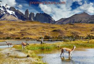 Chiles Torres del Paine National Park
