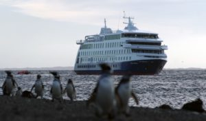 The Stella Australis with Magellenic Penguins near Patagonia and Cape Horn
