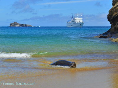 Five Things You Didn't Know About the Galapagos